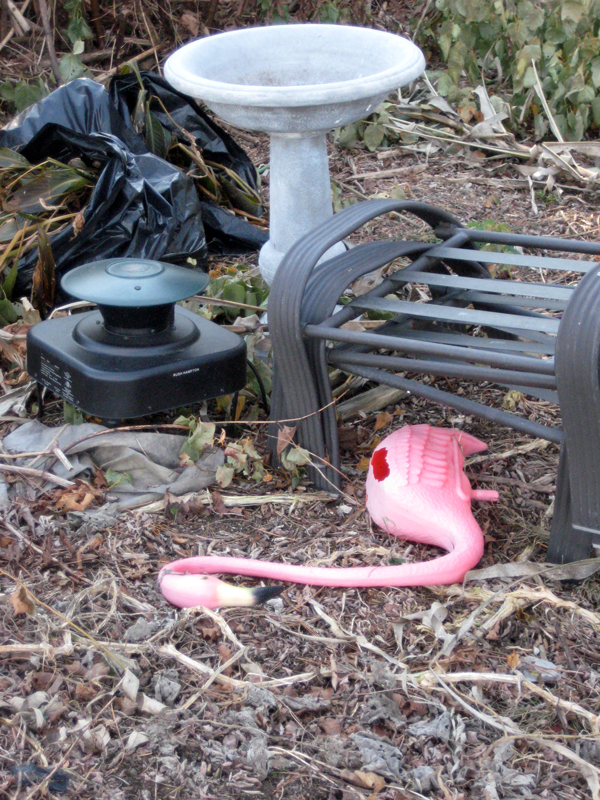 dead-pink-flamingo